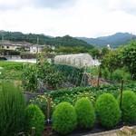 串串 - 湖南市にある自家菜園☆