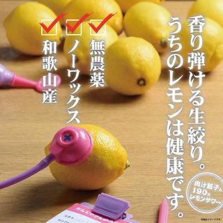選べるレモンサワーは全部で11種類!1杯190円より★