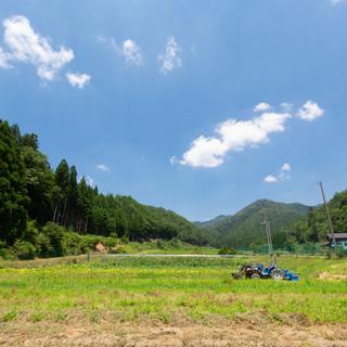 京都・京北の自家農園