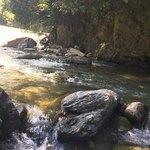 かやの木 - 店の近くを流れる余野川。