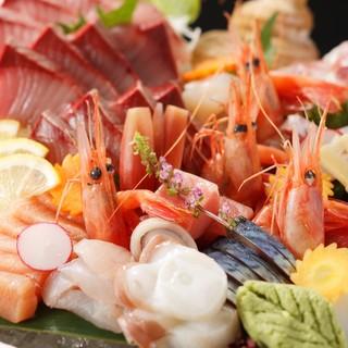 キトキトな鮮魚をお刺身やお寿司で愉しむ