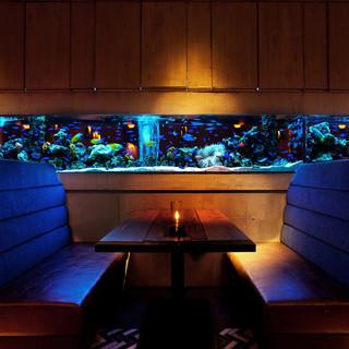 料理の魅力を引き立てる特別な空間