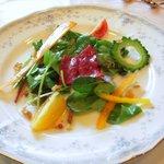 アルムの森  - 料理写真:前菜:フレッシュ野菜と馬刺しのカルパッチョ風サラダ