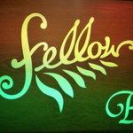 Fellow -