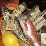 90403833 - SHOW OFFされるオススメの魚