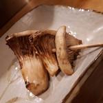 酉たか - 白アワビ茸