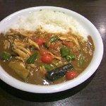 9041004 - とり肉と夏野菜カレー(夏季限定品)
