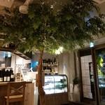 あたたかなお皿 - 店内に木がっ!(笑)