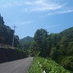 風の丘 - 左側の坂の上にあります。これは下の道の景色。