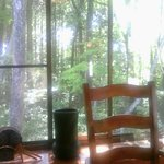 甲 - 窓の外は緑の森
