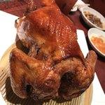 酒菜 刀削麺 - 鶏の丸焼き
