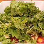 90506053 - 無農薬パクチーグリーンサラダ