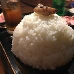 焼肉の田口 - こんもりご飯のトップにシロを。いやん♡