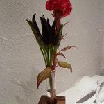 カンブーザ - テーブルの花