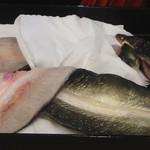 90671829 - 熊本の巨大天然鰻