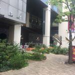Thai Food Lounge DEE  - ビッグステップ