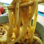名水うどん かたしな食堂 - 太麺