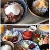 鎌倉プリンスホテル - 料理写真:しらす丼と漬けマグロ丼にしました!
