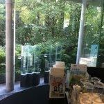 けやきの杜 宮城県図書館店 - 窓からの景色がキレイ☆
