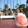 ペンギンショップ - 料理写真:塩スイカ氷(400)