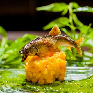 日本料理 TOBIUME - 料理写真: