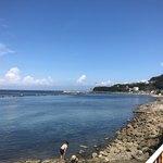 廻転寿司 海鮮 - 走水付近