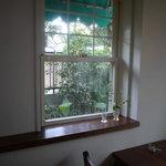 スイーツ - 窓の外は緑