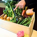 90962325 - 藤沢産の野菜の説明