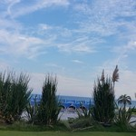 S.DINING【CAFE&BAR】 - 緑と海と空が見えます