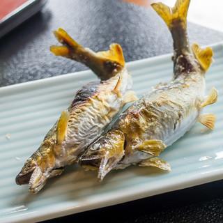 鮎料理の店 鮎の里 - 鮎塩焼き
