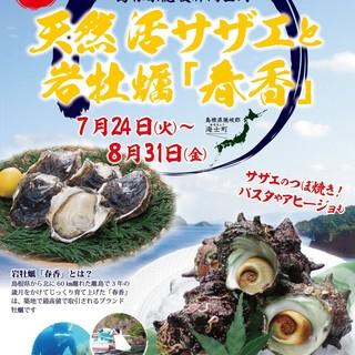 8/31まで!ジャックポット夏の陣!活サザエと岩牡蠣『春香』
