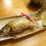 八丁堀 朋 - 「鮎」岩塩焼き