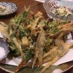島料理 海響 - アーサとごぼうの天ぷら
