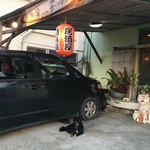 島料理 海響 - お店 外観