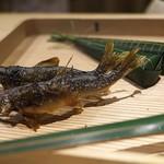 91213857 - 鮎とちまき。ちまきは昆布締めにした鯛に木の芽を巻いて。