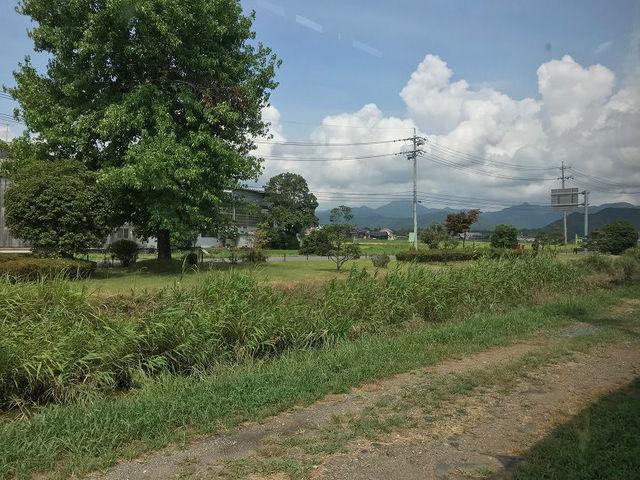 県道79号関本巣線の山県市にある...