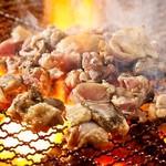 黒木屋 宮崎清武加納 - 宮崎地頭鶏、朝〆で鮮度抜群。