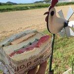 クルール - 料理写真:ハムとごぼうサラダ&ふわふわ卵焼き300円