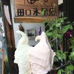 田口氷菓店 - 料理写真:ダブルコーン(420円)(2018.08.現在)