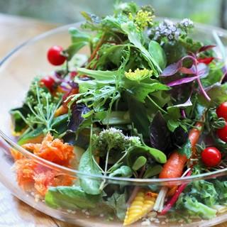 まずはコレ!!《無農薬・有機野菜の40種健康サラダ》