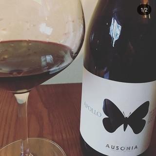 ソムリエ厳選!イタリア産のワインを多数ご用意しております。
