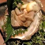 呑助 あげ屋 - 福井県若狭湾岩牡蠣