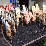 万代島鮮魚センター -