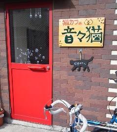 猫カフェ 音々猫 - 入口ドア