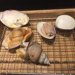築地の貝 -
