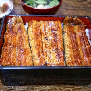 うなぎ 浜名 - 料理写真:■うな重(大)7884円