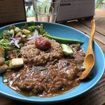 ニモ アルカモ - 梅干しと牛肉のトマトカレー