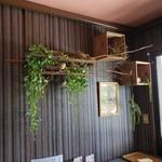 桃の農家カフェ ラペスカ - 店内の様子