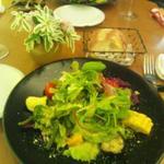 イルカントゥチョ - 前菜のサラダ
