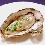 バール マツダ - 夏牡蠣パクチーコラトゥーラソース様